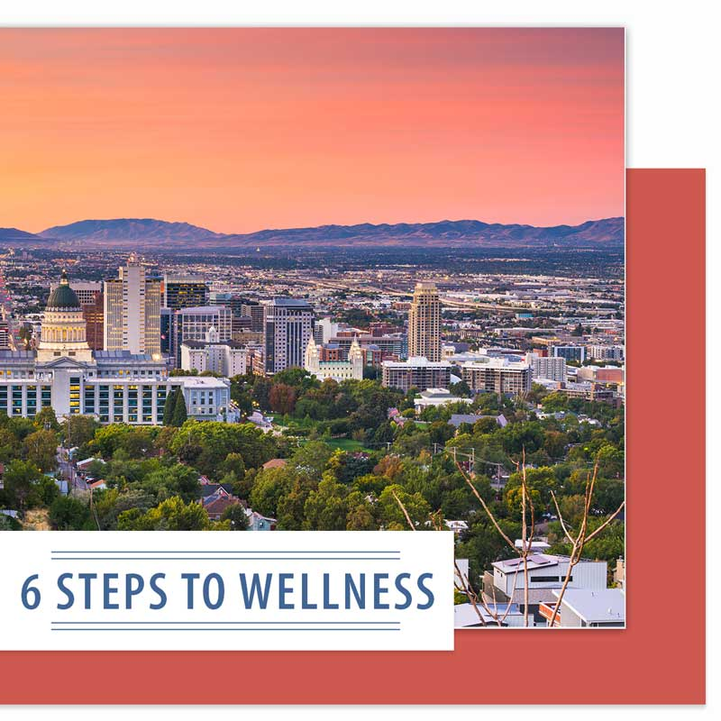 6 Steps to Wellness Seminar 2021